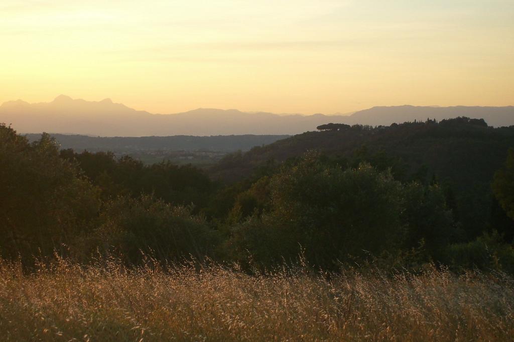 www-andrea-rittich-de-yoga-nia-beckenboden-landschaft